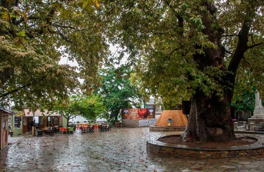 Δράσεις & Εκδηλώσεις Σεπτεμβρίου για τα 100 χρόνια Ζαγορίν