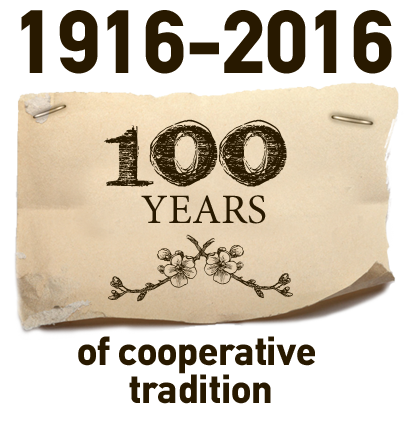 100 years of cooperative tradition