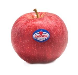 Το φθινόπωρο ξεκινάει με προϊόντα ZAGORIN