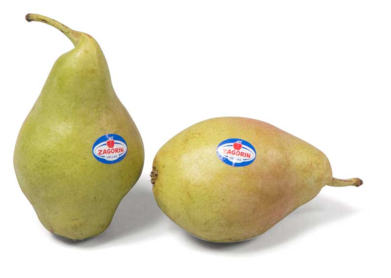Αγροτικός Συνεταιρισμός Ζαγοράς Πηλίου: Τα μήλα ZAGORIN, έρχονται με το Φθινόπωρο!!!